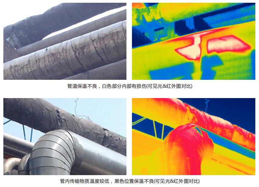 大立石油石化行业应用